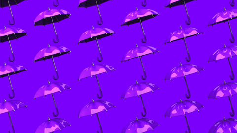 Purple Umbrellas On Purple Background Animation