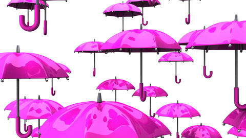 Rising Pink Umbrellas On White Background Animation