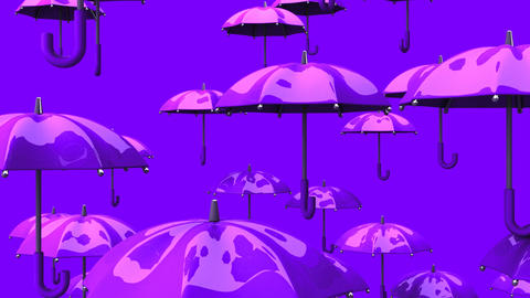 Rising Purple Umbrellas On Purple Background Animation