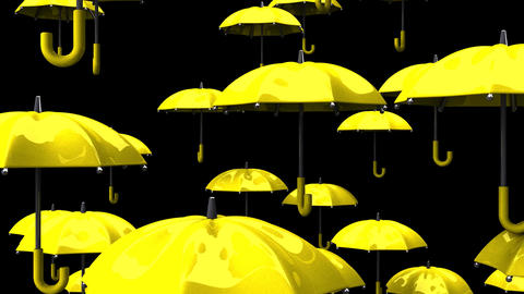 Rising Yellow Umbrellas On Black Background Animation