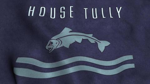 House Tully Flag Waving Animation