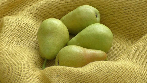 Fresh organic pears on yellow sacking. Pear autumn harvest. Juicy flavorful pear Live Action