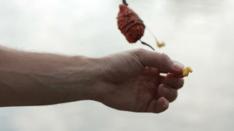 Fisherman's hands baiting fishing hook closeup Footage