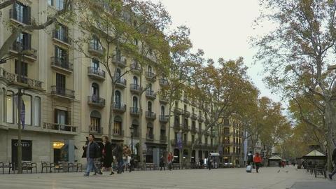 Big Street Downtown For Pedestrians ビデオ