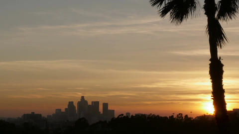 Downtown Los Angeles sunset time lapse and a palm tree shot from East LA illumin Footage