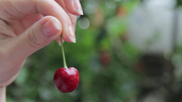 Young girl plays with a cherry taking it from stem and turning it 1 Footage