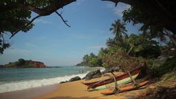 The tropical landscape. Beach of a tropical island . Sri Lanka. Mirissa Footage