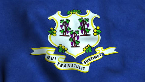 Connecticut State Flag Image