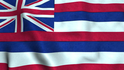 Hawaii State Flag Image