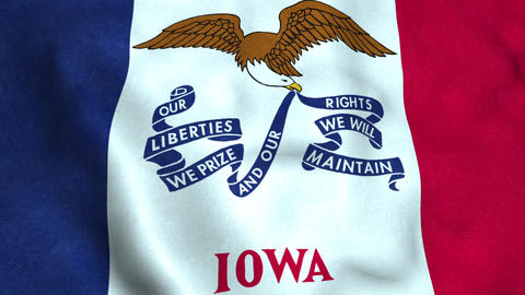 Iowa State Flag Image