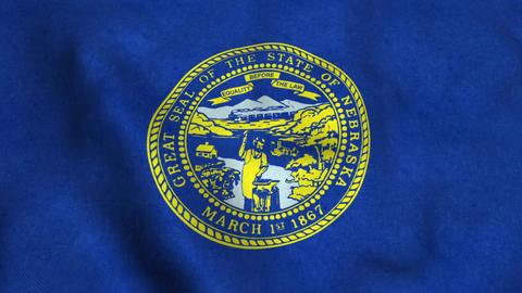 Nebraska State Flag Image