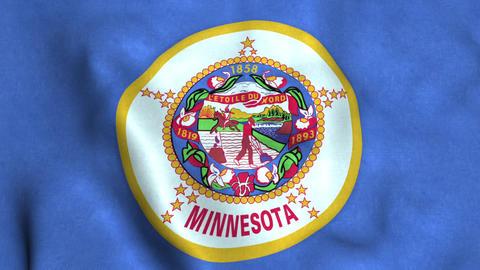 Minnesota State Flag Image