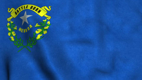 Nevada State Flag Image
