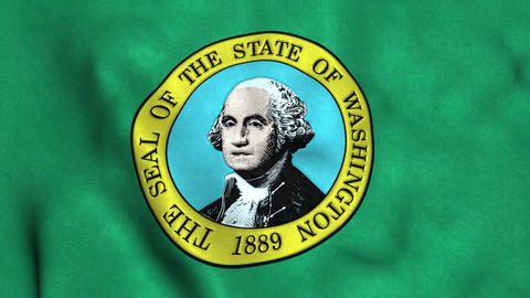 Washington State Flag Image