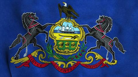 Pennsylvania State Flag Image