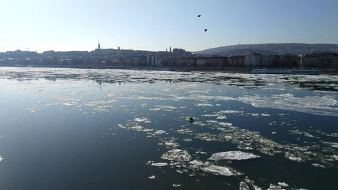 Ice flow on the Danube river Footage