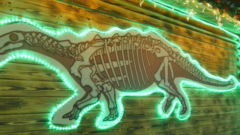Dinosaur Picture with Lights Displayed on Museum Wall in Park Footage
