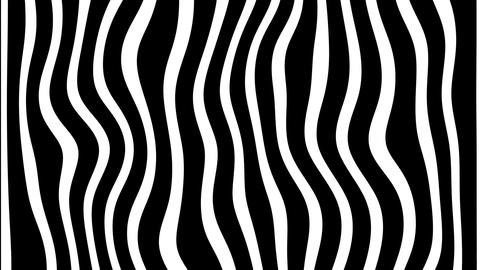 Line Zebra Movement Background Animation