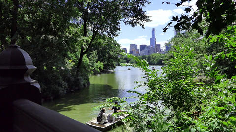 NYC Central Park Lake Boats Live Action