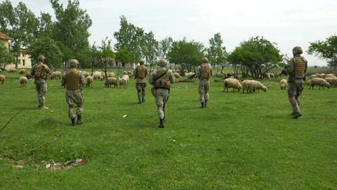 Soldiers armed squad in military clothing camouflage going on patrol in a villag Footage