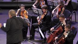 Franko Orchestra UHD