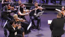Franko Orchestra UHD 2