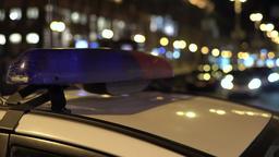 Police Flasher Spring 1