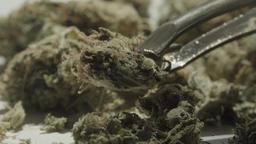 Cannabis UHD