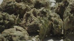 Cannabis UHD 0