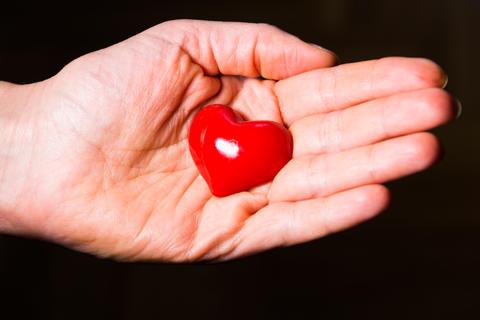 Heart in hand Foto