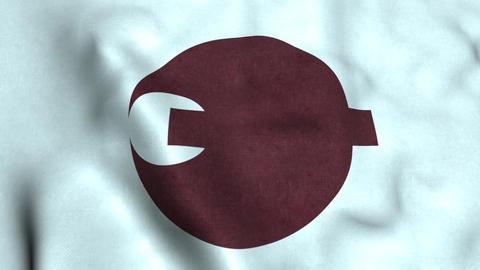 Flag Of Nara Animation