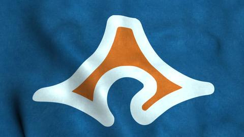 Flag Of Shizuoka Animation