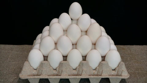 Chicken eggs time lapse Archivo