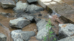 Flowing mountain stream with transparent water and stones on bottom ビデオ