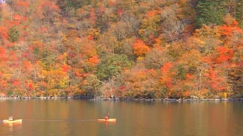 十和田湖畔 5 ビデオ