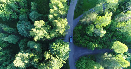 Car driving in the forest Cinema 4k aerial tilt down view above a car driving on Live Action