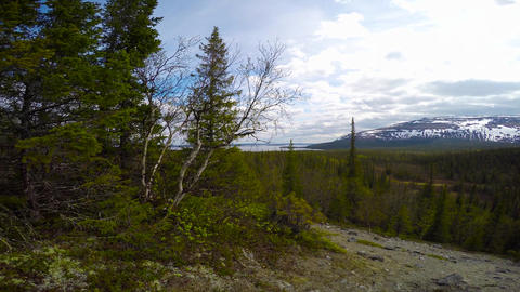 Hiking paths in the valley of lake Lovozero. Kola Peninsula Footage