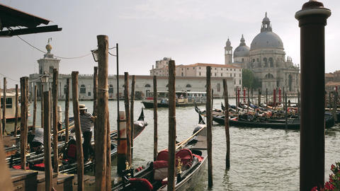 Basilica di Santa Maria della Salute church view from the gandolas pier Footage