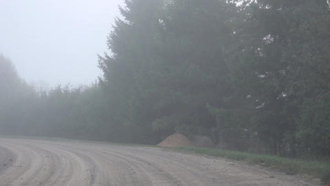 bad visibility driving car in rural gravel road at foggy day. 4K Footage