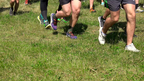 Group of runners run though grass in forest Footage