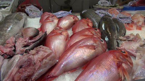 fresh fish in spanish market stall with fresh ocean fish on ice Footage