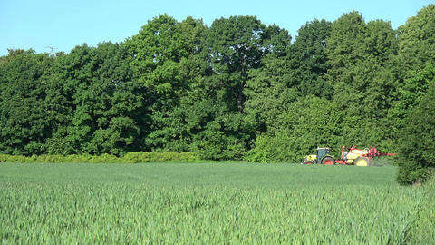 tractor spraying with chemicals farm wheat field near forest Footage