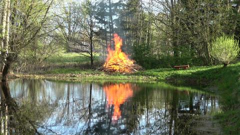 Spring bonfire campfire near pond in park Footage