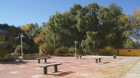 Courtyard with autumn trees 01 Stock Video Footage