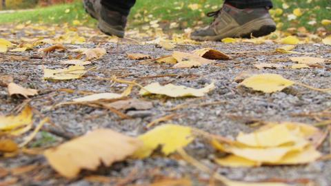 autumn pass Stock Video Footage