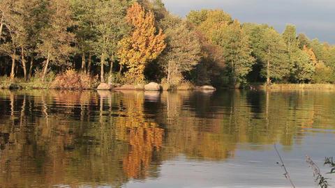 Fishermen on the autumn lake Stock Video Footage
