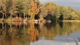 Fishermen on the autumn lake Footage