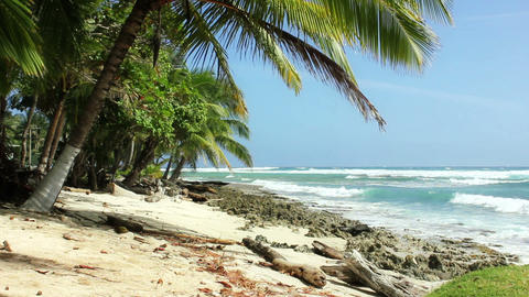 Caribean beach 02 Stock Video Footage