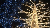 Christmas lights in Japan Footage
