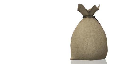 Money Bag, seamless loop Animation